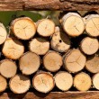 Frame of firewood — Stockfoto