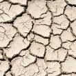 Cracked clay soil image — Stockfoto