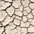 Cracked clay soil image — Foto de Stock