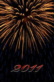 Firework 2011 — Stock Photo