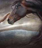 Theme eternal as the world, the person and a horse — Stock Photo
