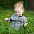 Little boy playing in grass - Stock Photo