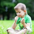 Portrait of a boy smelling flowers — Stock Photo #3370473