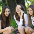 Stock Photo: Three beautiful smile student girl in the park