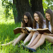 Three students reading books together outdoor — 图库照片
