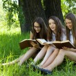 Three students reading books together outdoor — Foto Stock