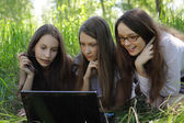 Three students relax on the grass in the park with notebook — Stock Photo