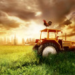 Agriculture - Foto Stock