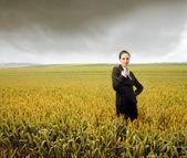 Wheat commerce — Stock Photo