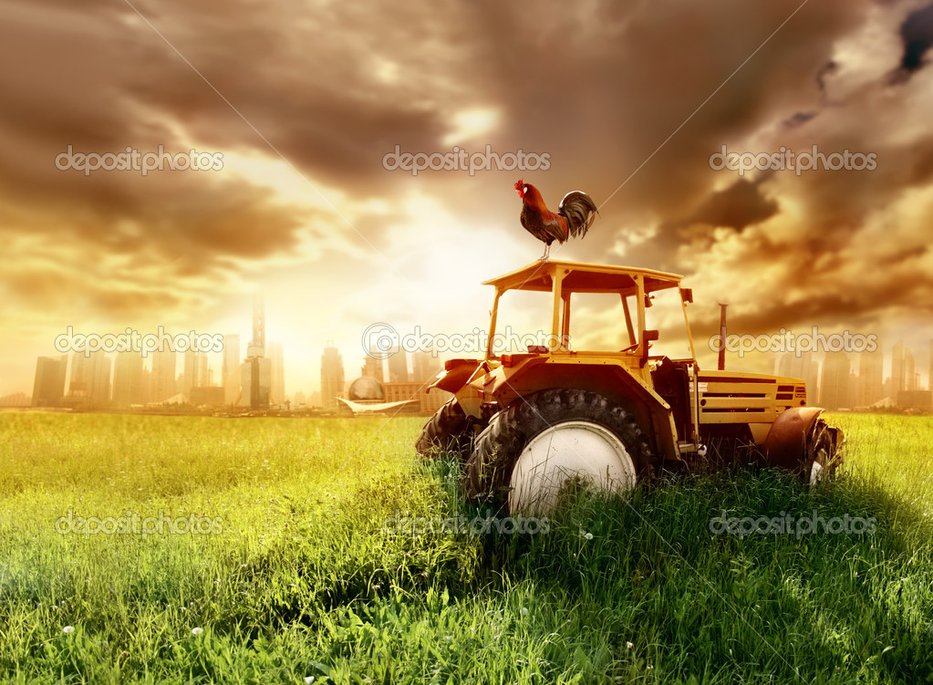 Rooster standing on a tractor on a green meadow  Stock Photo #3195794
