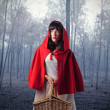 Little Red Riding Hood — Stock Photo #3210014