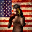 American boxer - Stock Photo