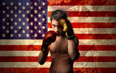 American boxer — Stock Photo