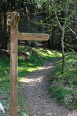 A blank hiking trail sign — Stock Photo