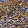 Stock Photo: Abstract background of river stones