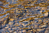 Abstract background of river stones — Stock Photo