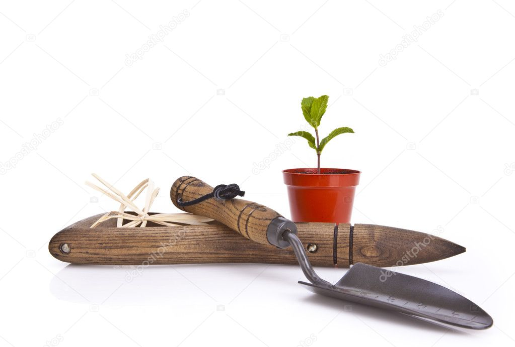 Gardening tools and plant pot over white background  Stock Photo #3090618