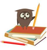 Owl, boeken en potloden — Stockvector