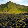 Giant's Causeway — Stock Photo #2716082