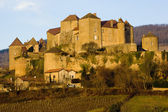 Berze-le-Chatel, Burgundy, France — Stock Photo