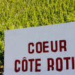 Cote Rotie — Stock Photo