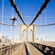 Brooklyn Bridge — Stock Photo #2799419