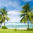 Barbados — Stock Photo #2799672