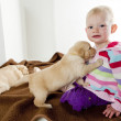 Toddler with puppies — Stock Photo