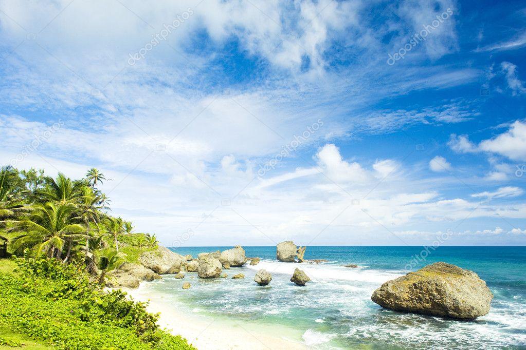 Фотообои Барбадос