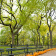 Royalty-Free Stock Photo: Central Park