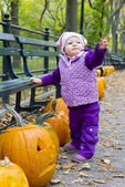 Toddler with pumpkins — Stock Photo