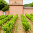 Stock Photo: Winery in Provence