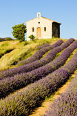 Plateau de Valensole — Stock Photo