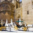 Carriages  in Seville — Foto Stock