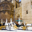Stock Photo: Carriages in Seville