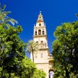 Royalty-Free Stock Photo: Cordoba