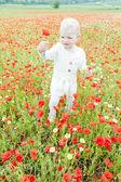 Little girl on meadow — Stock Photo