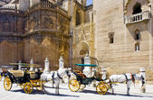 Carriages in Seville — Stock Photo