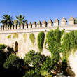 Alcazar in Cordoba — Stock Photo