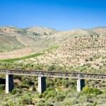 Railway viaduct — Stock Photo #2870591