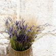 Lavenders - Foto Stock