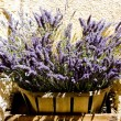 Bunch of lavenders - Foto Stock