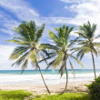 Barbados — Stock Photo