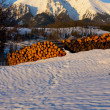 Stock Photo: Belianske Tatry