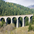 Railway viaduct — Stock Photo #2967801
