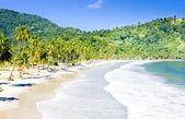 Trinidad — Stock Photo