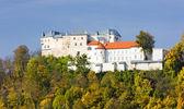 Lupciansky Castle — Stock Photo