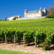 Chateau de Rully — Stock Photo #2975915