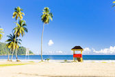 Trinidad — Stock Photo