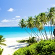 Barbados — Stock Photo #3037177